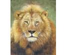 Leeuw in rust